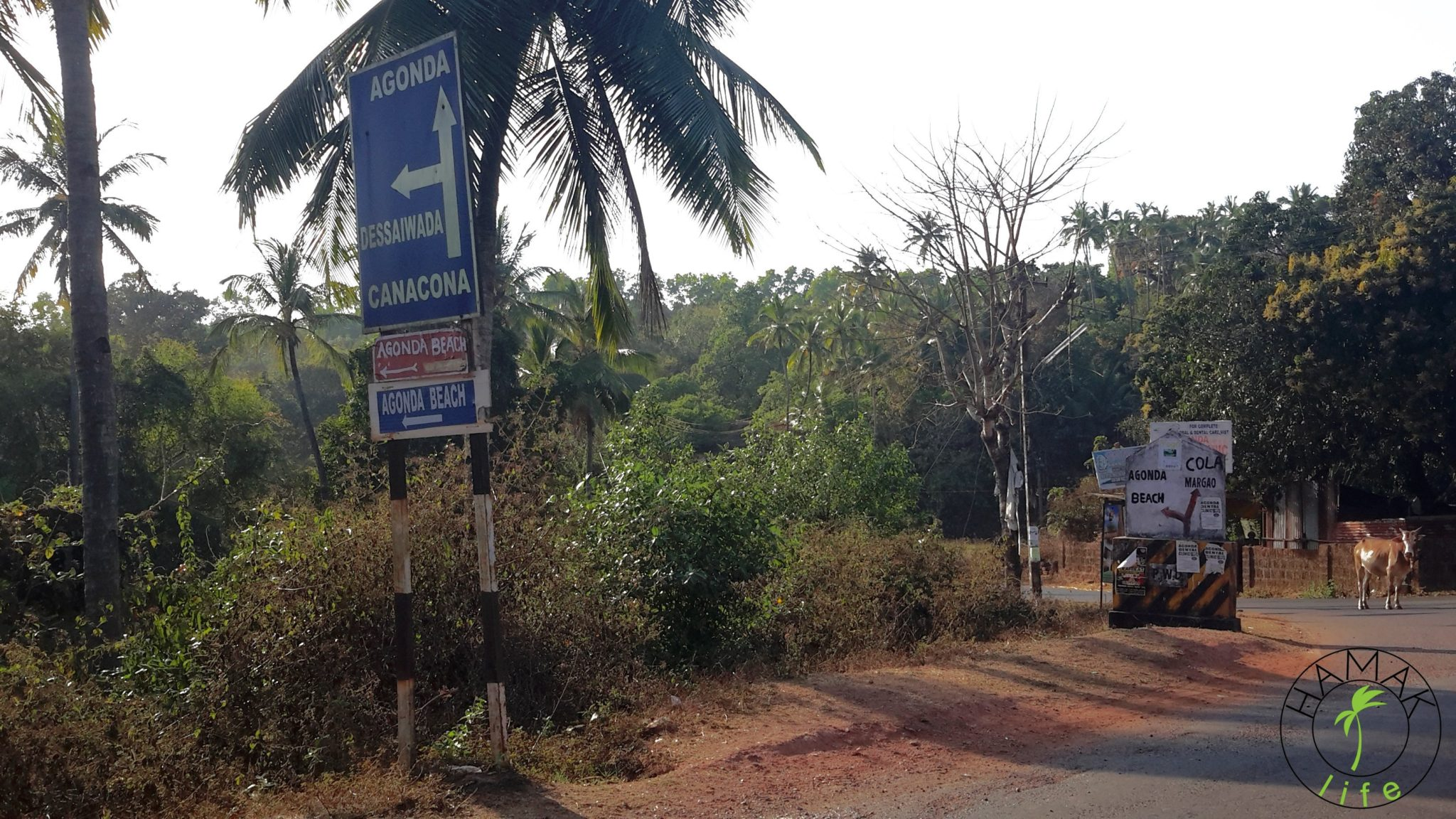 Skrzyżowanie na Goa. W Indiach.