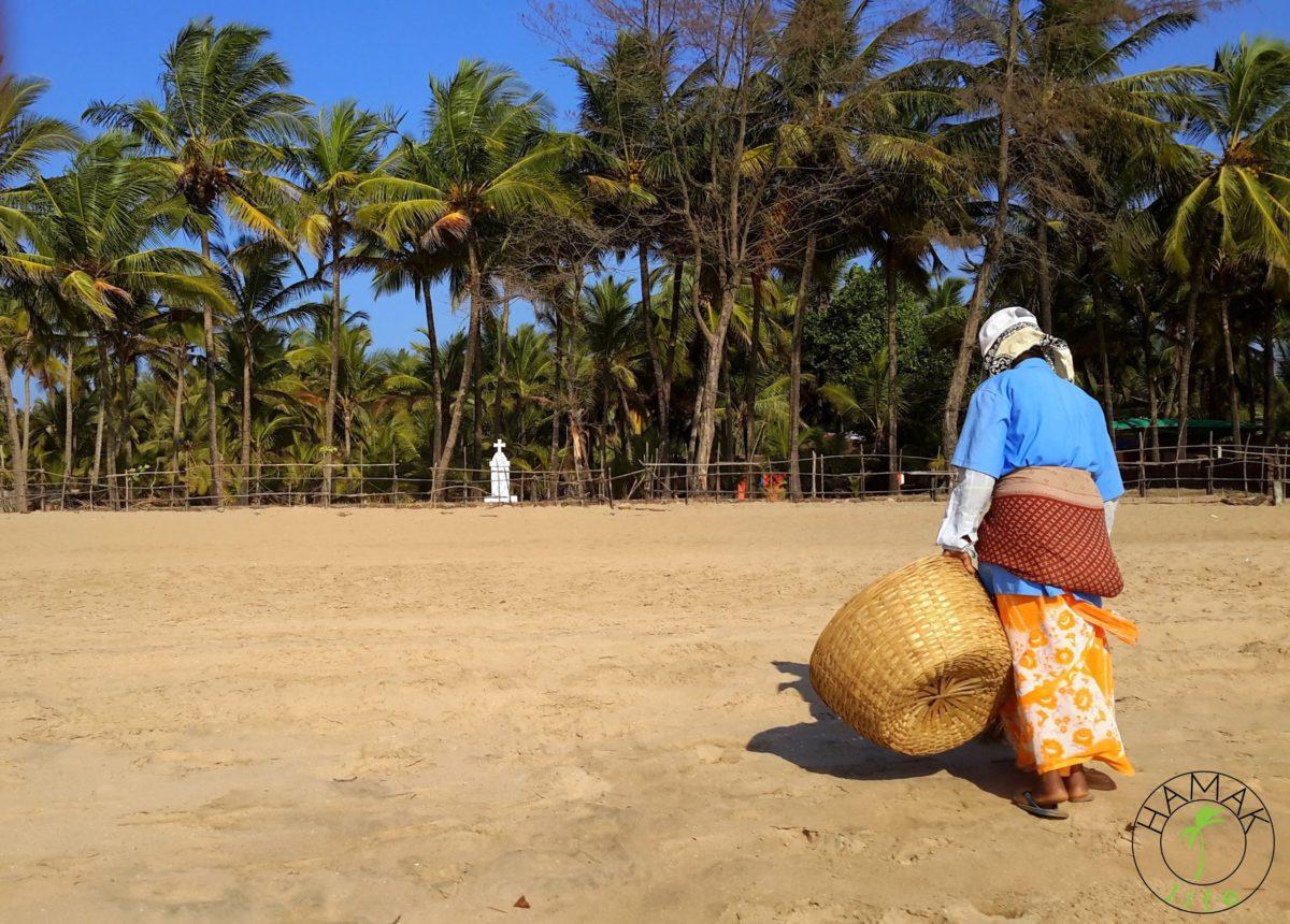 Plaża na Goa. Sprzątanie plaży w Indiach.