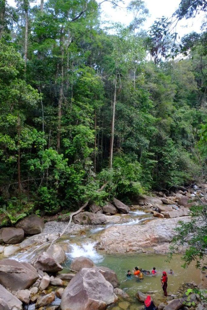 Taman Negara , Malezja 2015