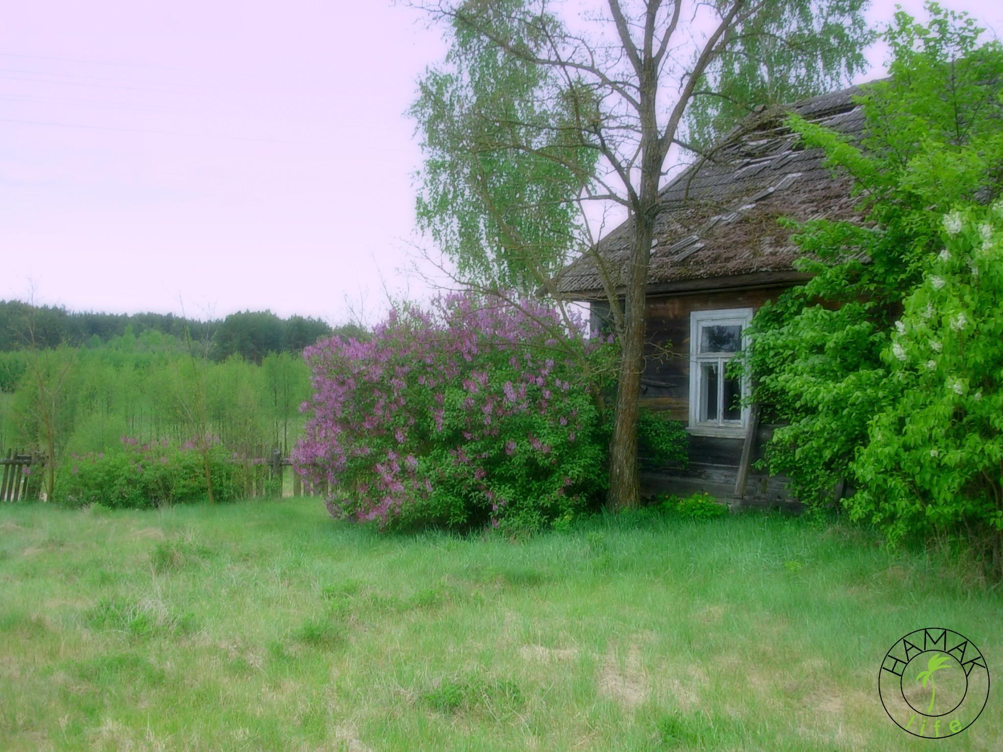 Dom we wsi Górany w Polsce