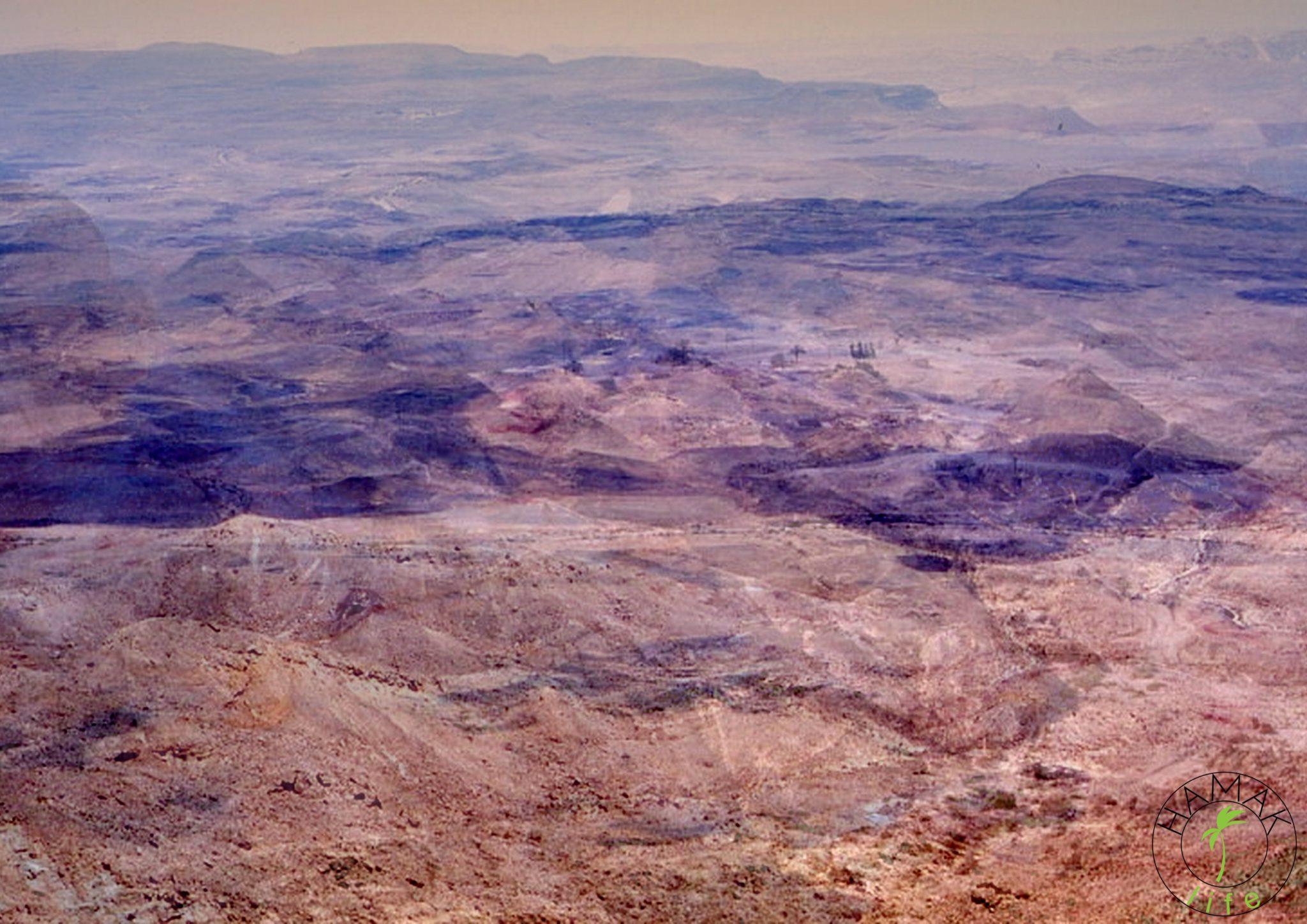 Pustnia w Izraelu. Królowa pustyni gdzieś się zapodziała ;)
