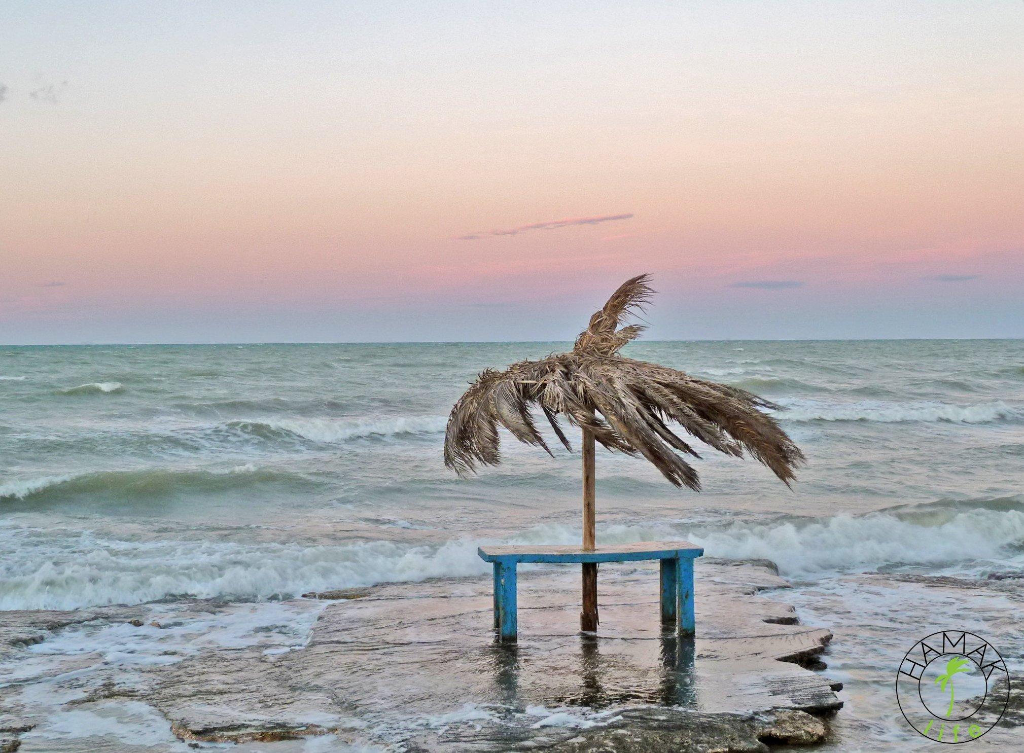 Nienasyceni na wakacjach, Apulia, wybrzeże adriatyckie