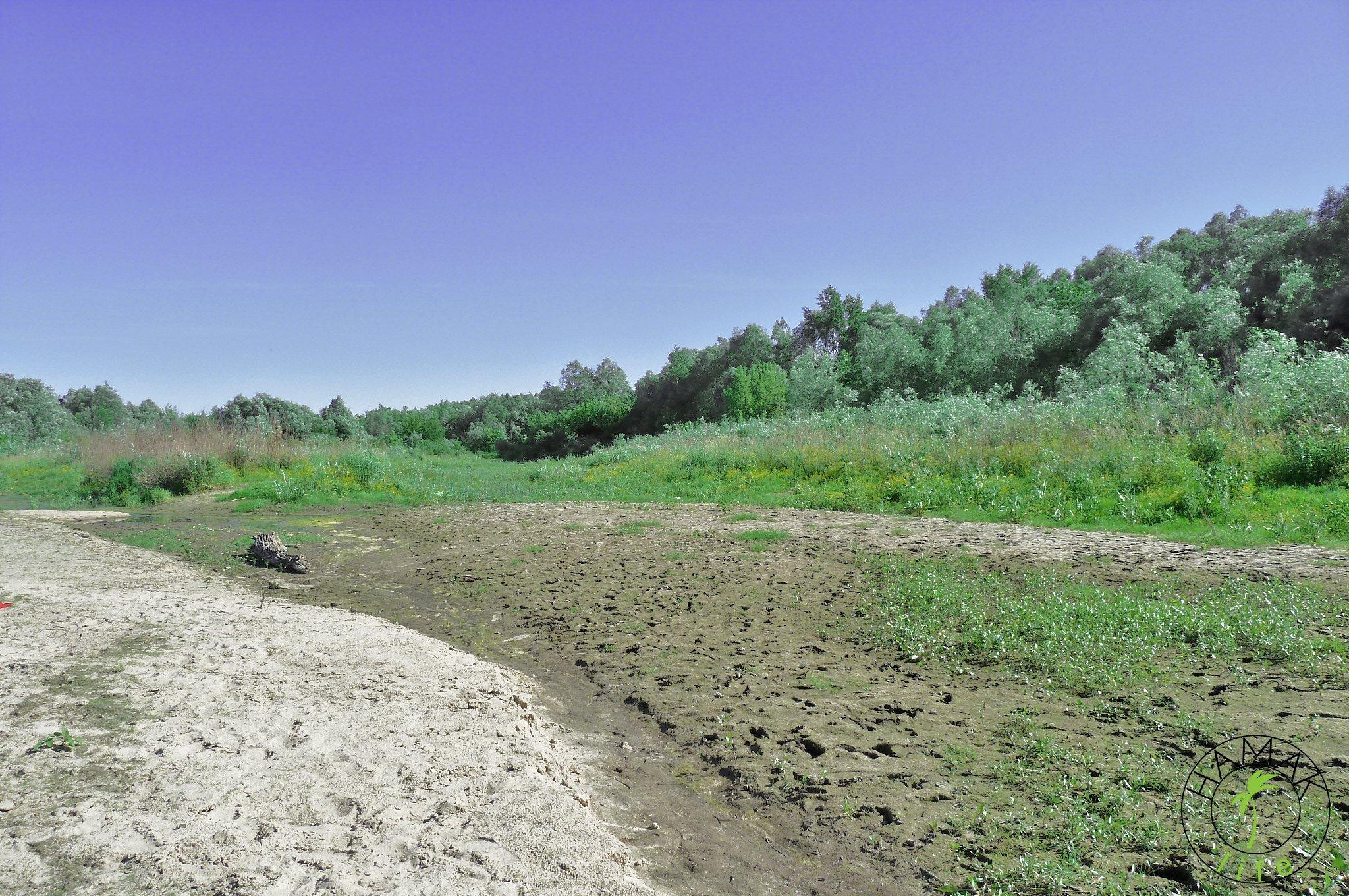 Po drugiej stronie warszawskie plaże na Zawadach.