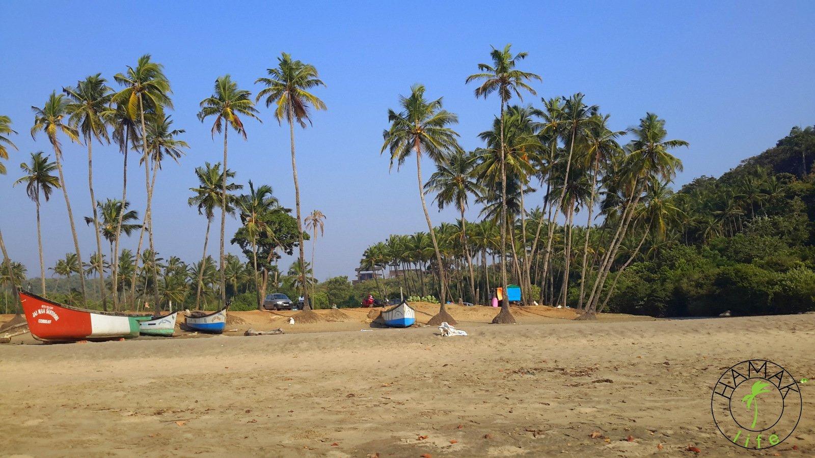 Goa, dzika plaża rybacka