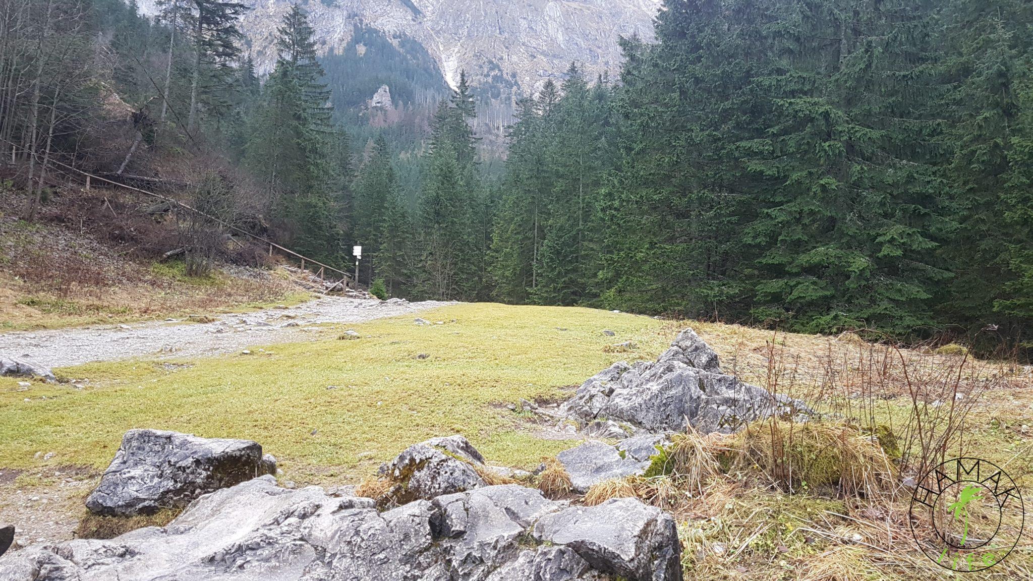 Dolina Strążyska na rozstaju szlaków