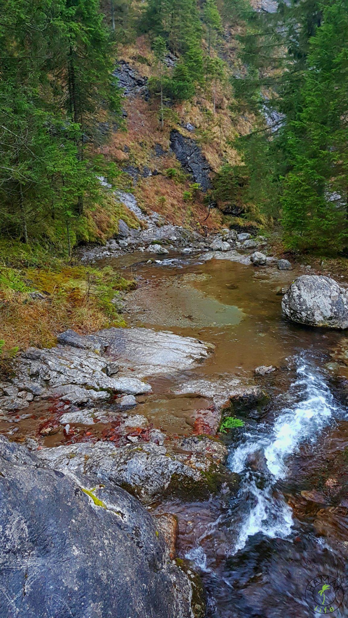 Natura w Tatrach